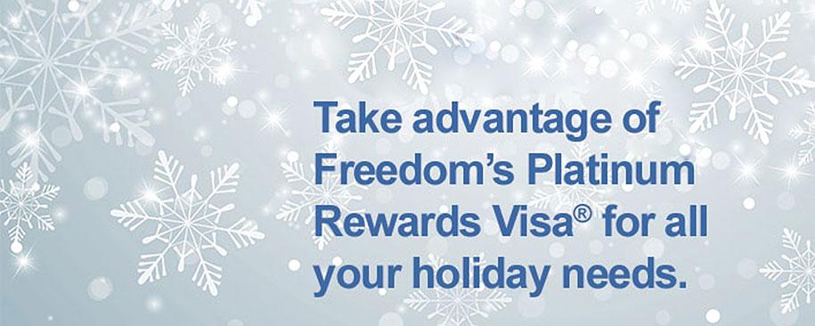 large-visa-image